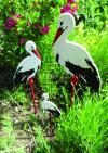 Kerti kitűző - nagy gólya